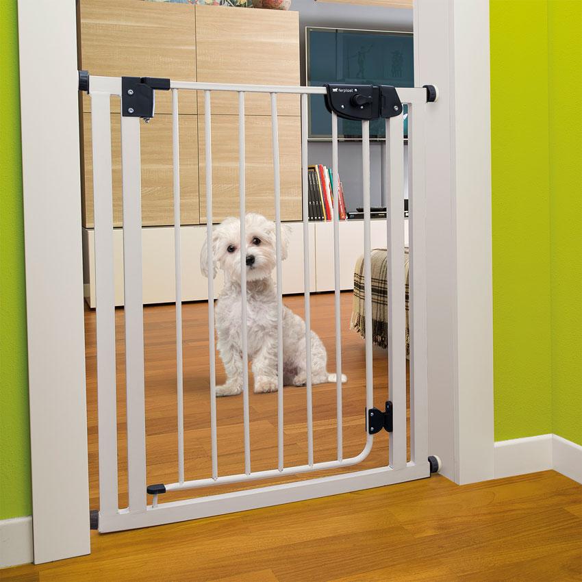 Dog-gate