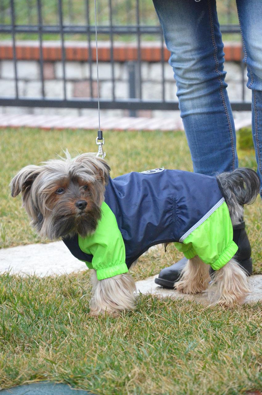 giacca-anti-pioggia-ferplast