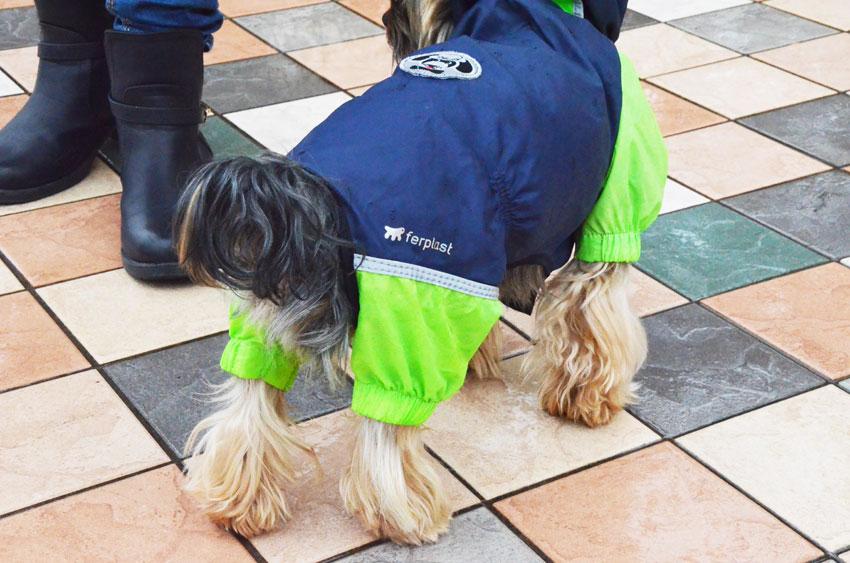 impermeabile-cane-dog-ferplast