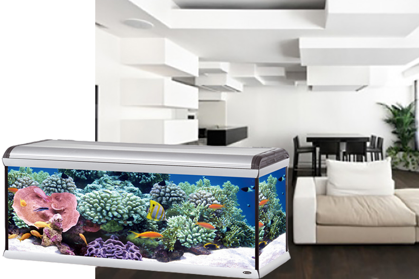 acquario-star-ferplast-1