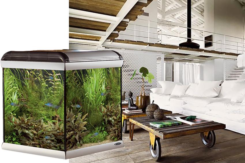 acquario-star-ferplast-design-arredamento