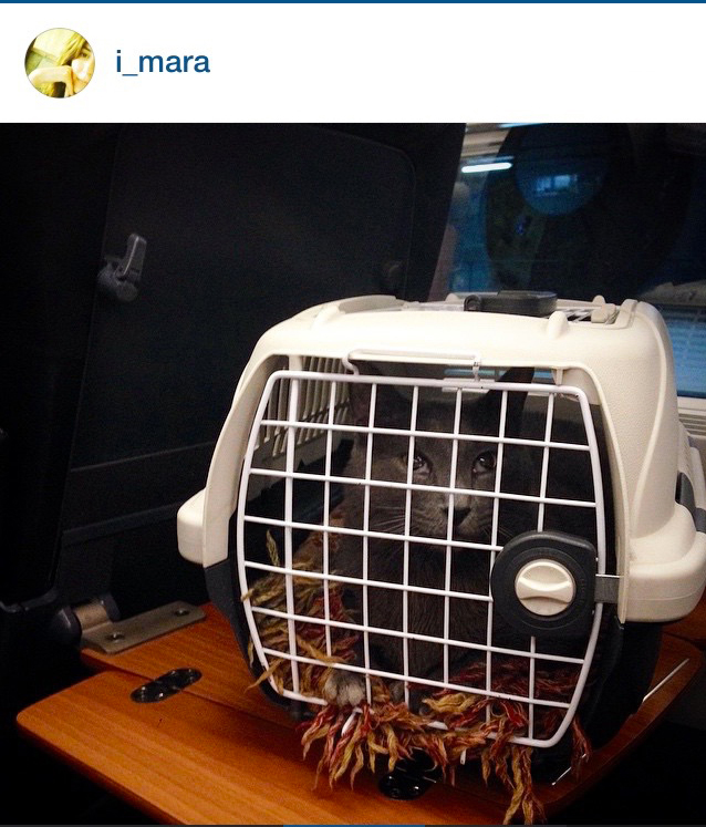 instagram-foto-luglio