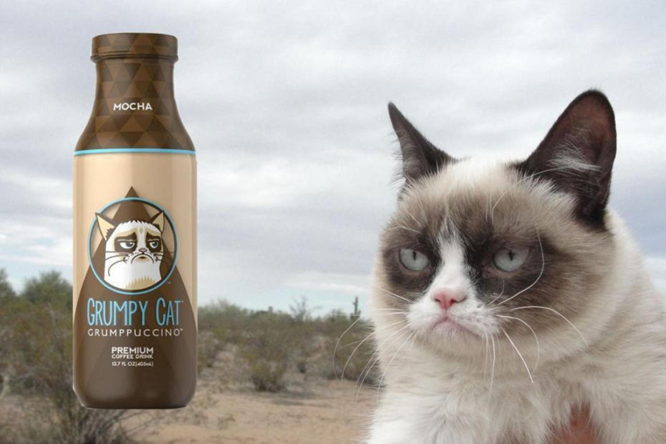 grumpuccino-grumpy-cat-gatto-più-ricco-del-mondo-ferplast
