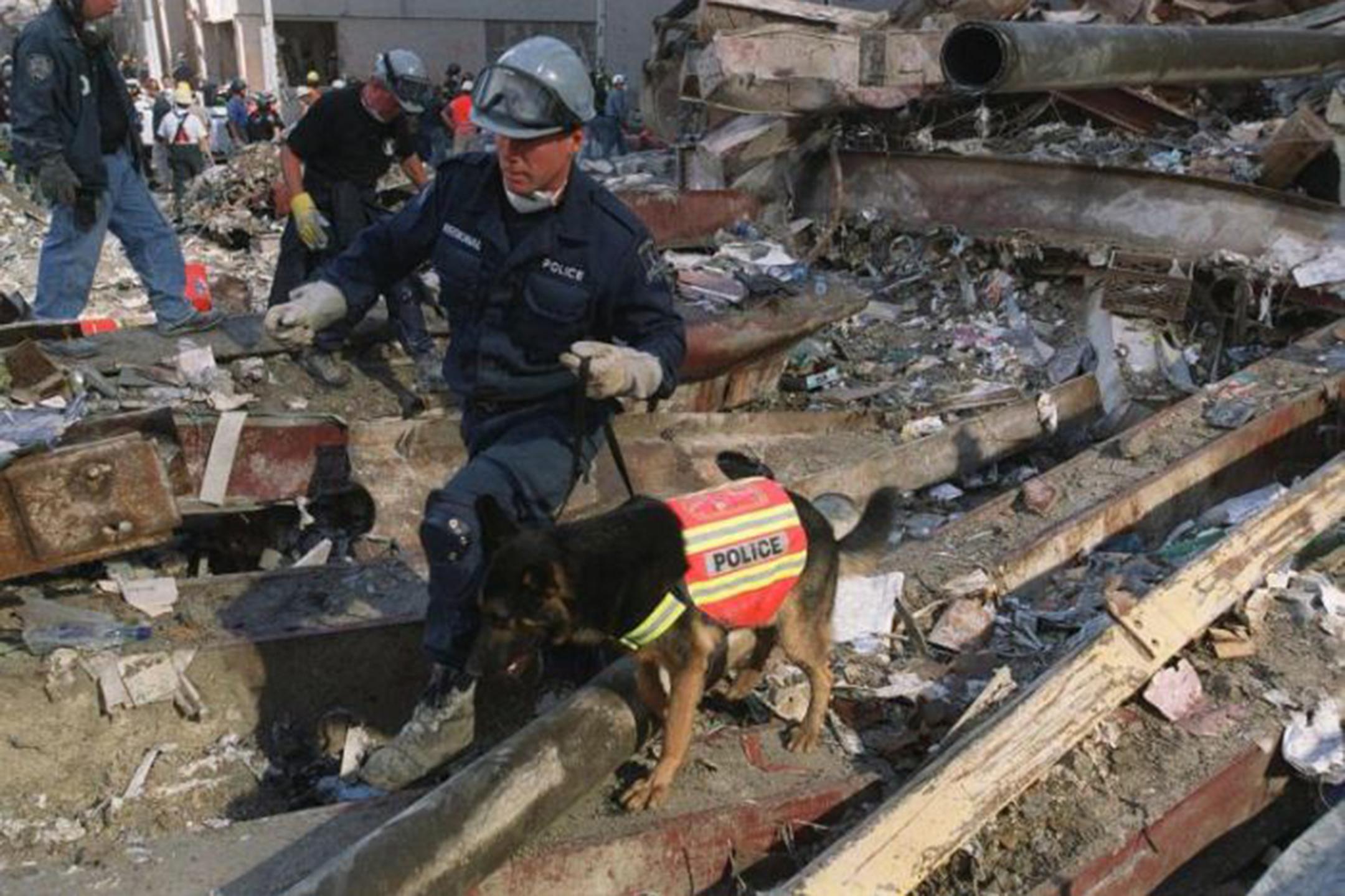 11-settembre-memoria-cani-eroi-attentato-usa