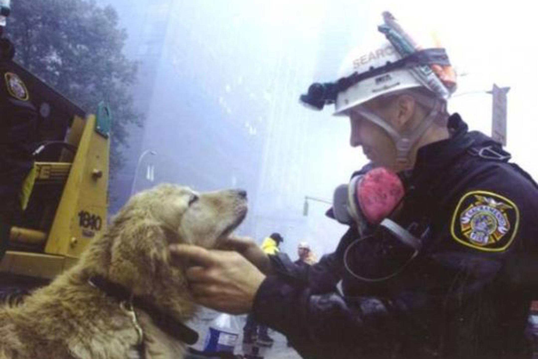 11-settembre-memoria-cani-eroi-attentato