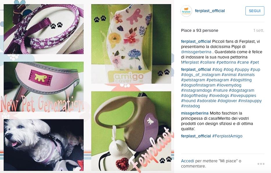 agosto-ferplast-instagram-preferiti-missgerberina-amigo