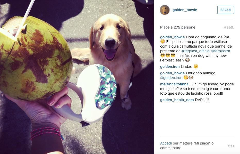 agosto-instagram-preferiti-amigo