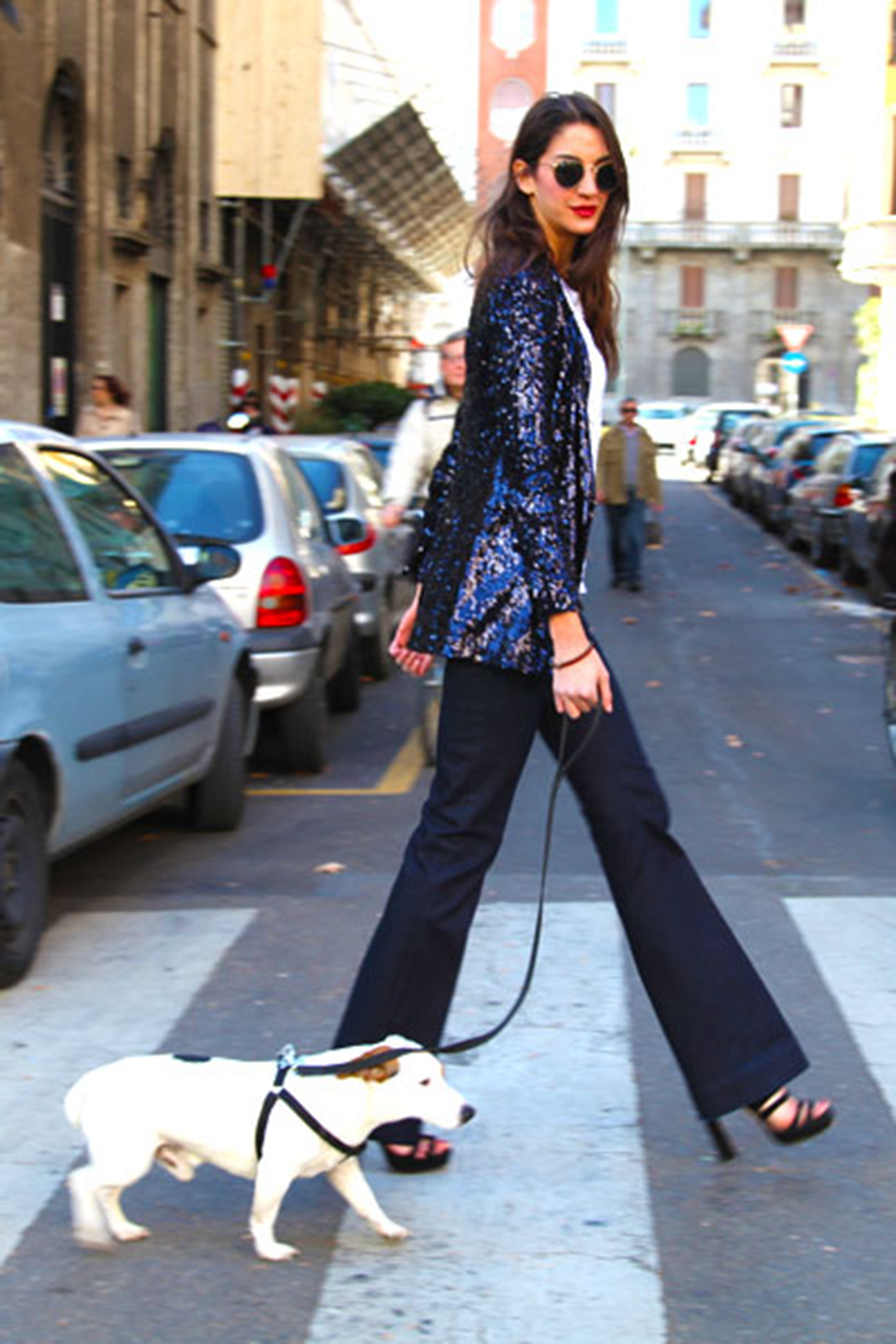animali-fashion-week-moda-sfilate-cane-new-york