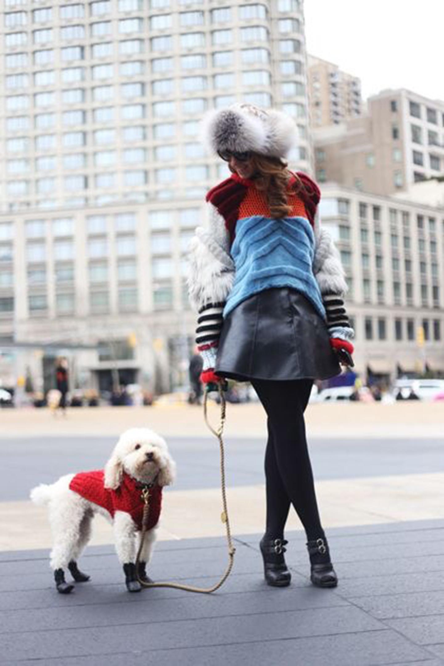 animali-fashion-week-street-style-ferplast