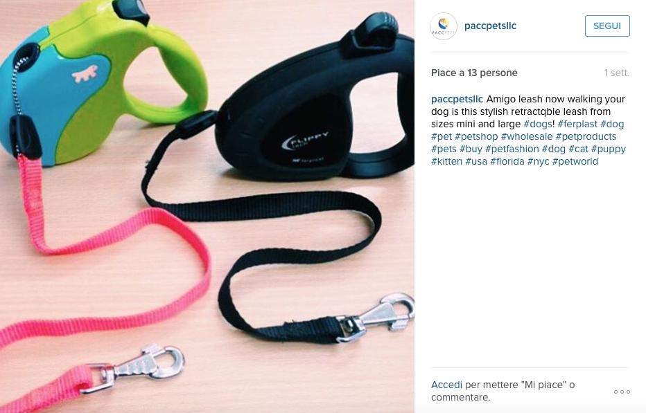 preferiti-agosto-instagram-ferplast-amigo