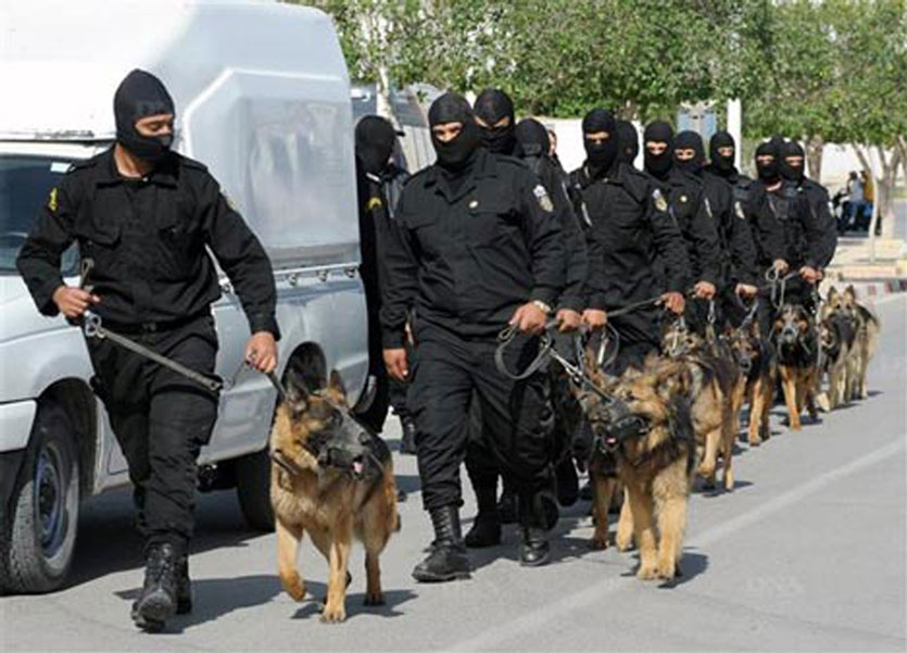 tunisian civil guard and canine brigade in action