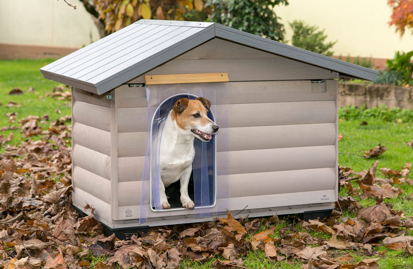 protect dog from cold Jack Russell dog inside Canada wooden kennel by Ferplast