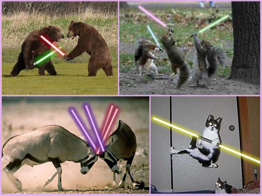 animali-con-spade-laser