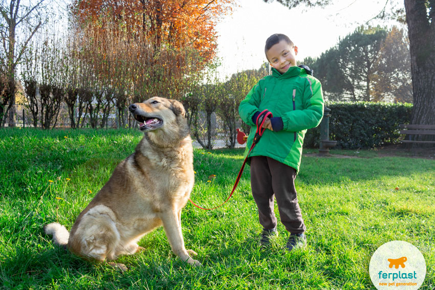 little child smiling with his shepherd dog in a recreation ground