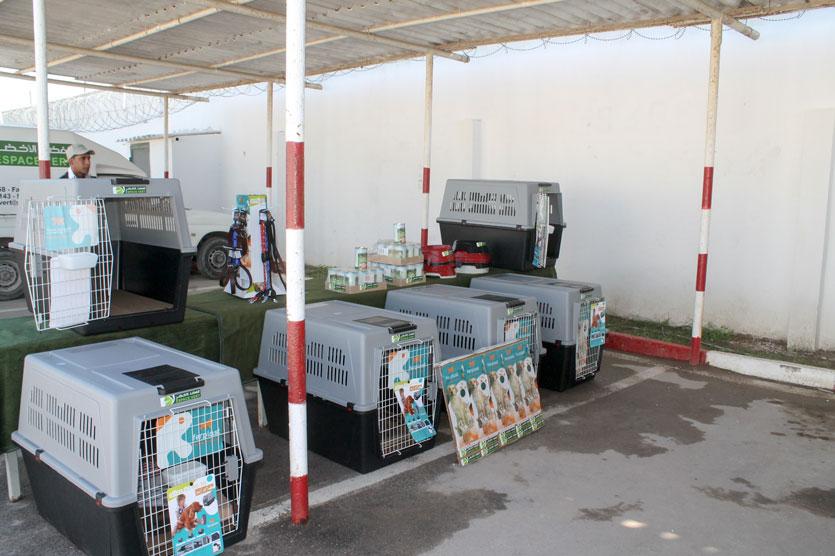 ferplast produtos para cães transportadores atlas tigelas magnus guias e coleiras VIP sport
