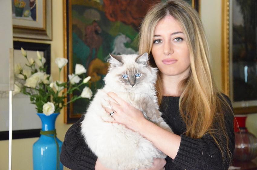 ilaria-gatto-siberiano