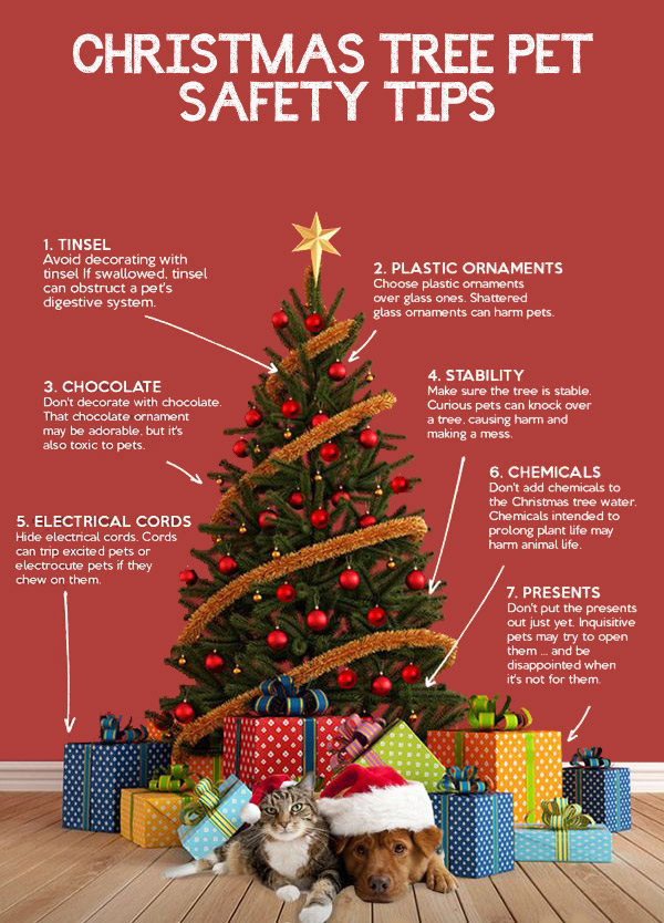 tips-christmas-tree
