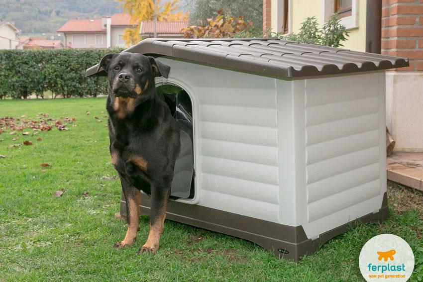 cane di razza Rottweiler dentro una cuccia in plastica Dogvilla di Ferplast