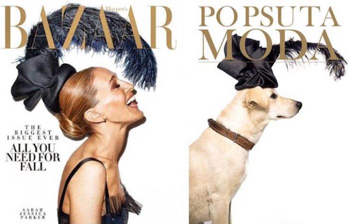 Мода и животные