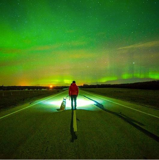 aurora-boreale-cane-vancanza