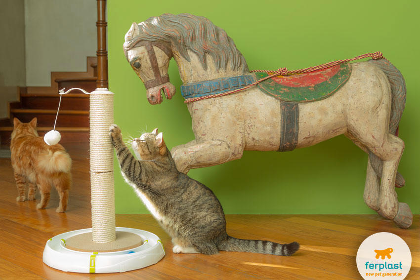 two cats playing with the scratching post Magic Tower by Ferplast