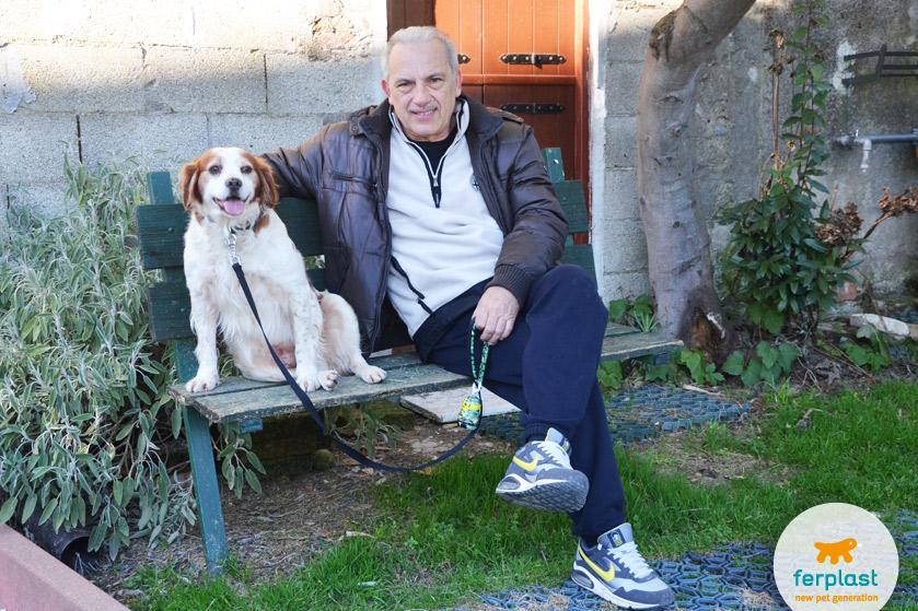 pensionati-animali-cane-epagneul-breton