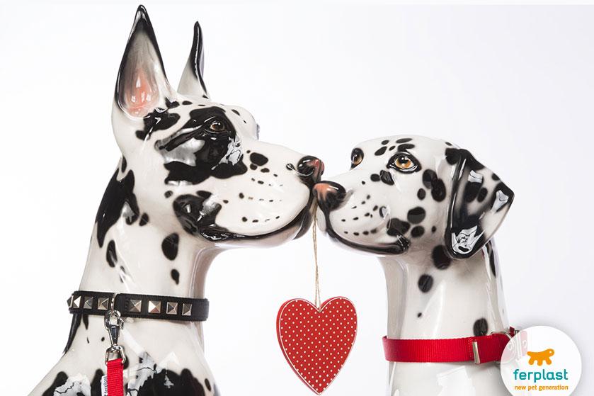 regali-animali-san-valentino