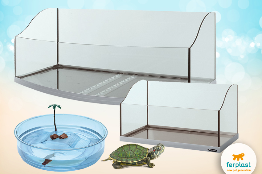 tartarughe acquatiche tutto su accessori e vasche per