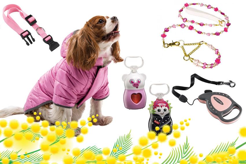 regali Ferplast per cani