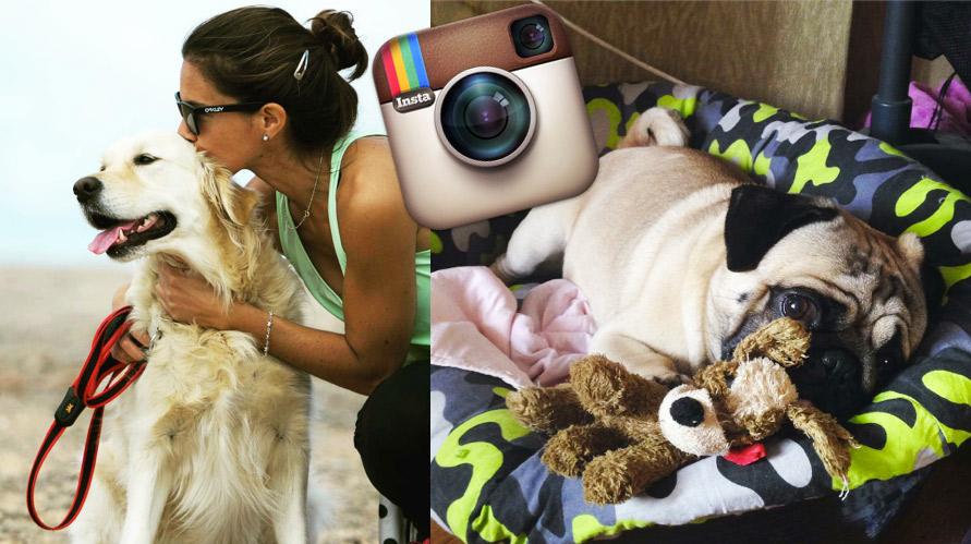 favoritos de fevereiro no instagram