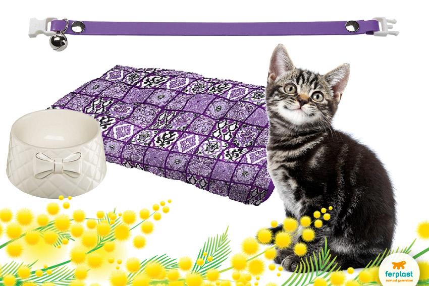 proposte regalo per gatti con prodotti ferplast