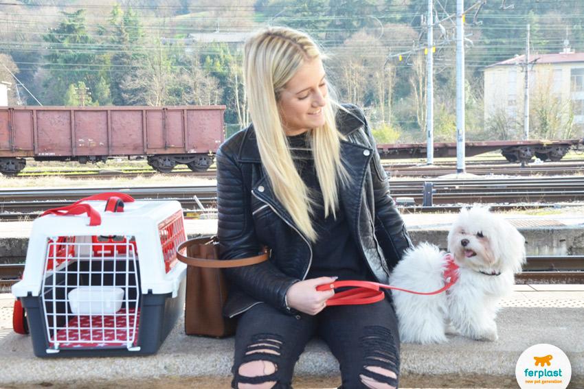 regolamentazioni-trenitalia-animali-italo-treno