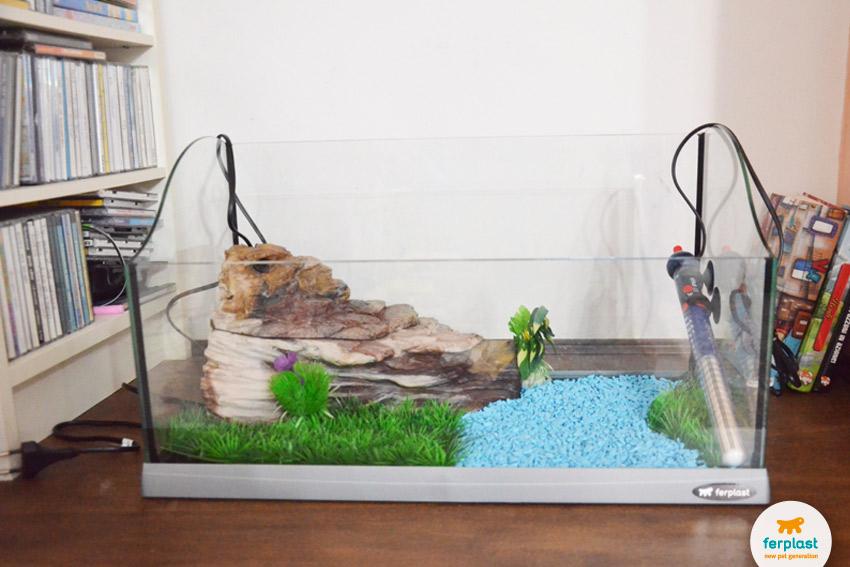Acquario per tartarughe scegli i migliori accessori per for Riscaldatore per tartarughe