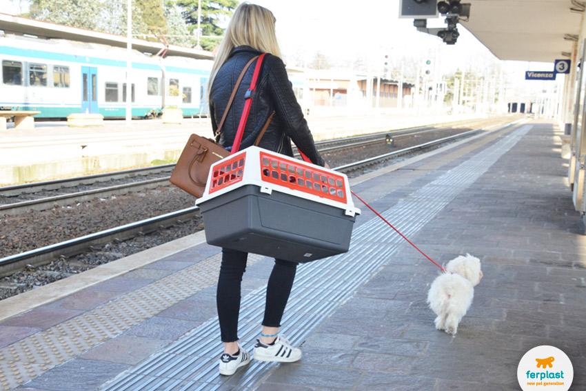 viaggiare-italotreno-animali-domestici