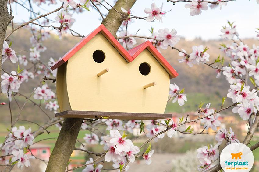casetta-uccellini-giardino-fiori-mandorlo-primavera