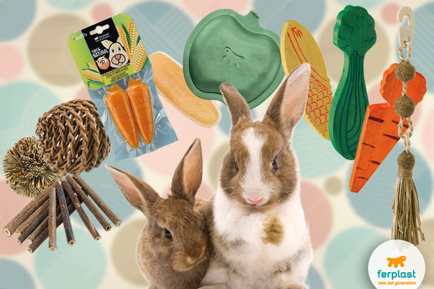 giochi dentali per conigli da rosicchiare