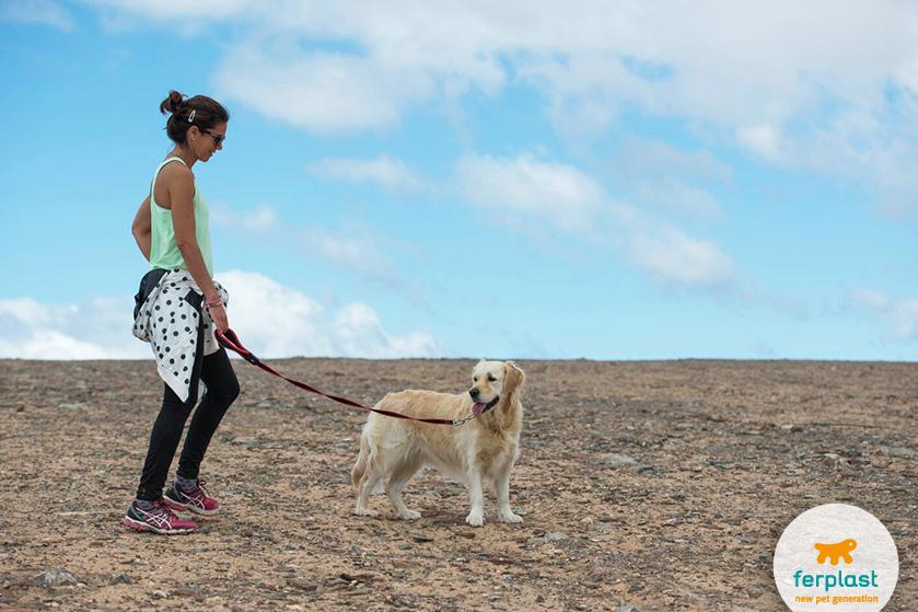 portare_cane_passeggiare