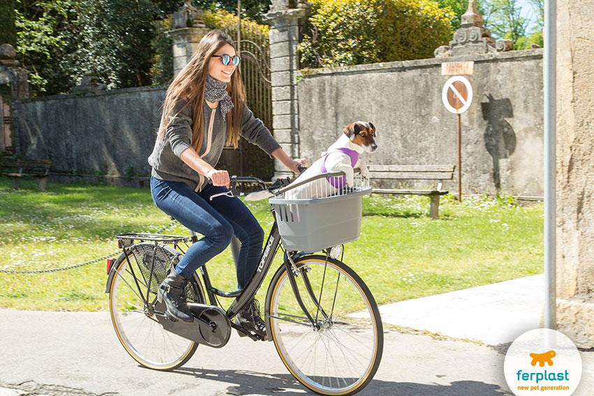 giri con il cane in bicicletta