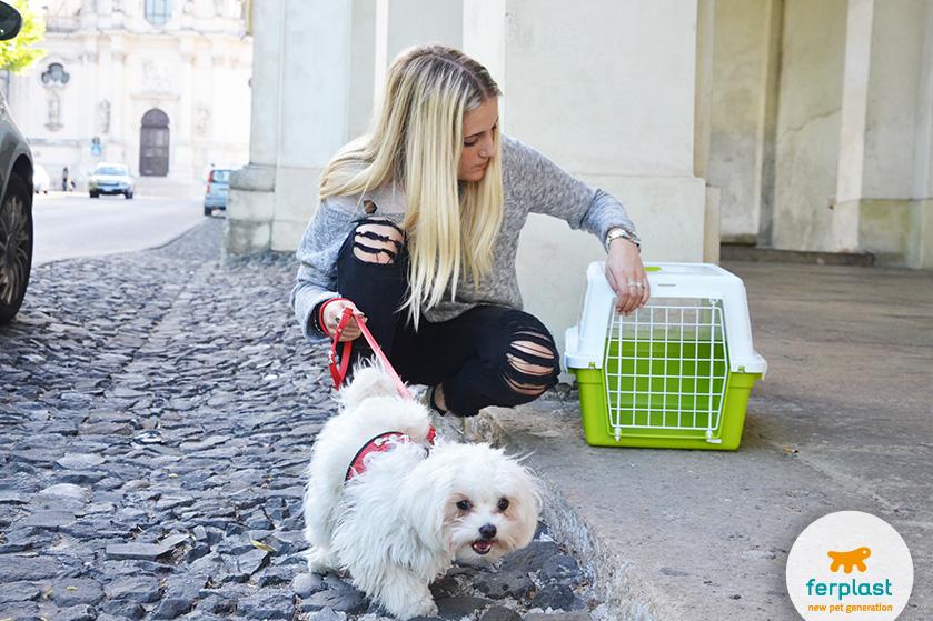 trasportino_cani_piccoli