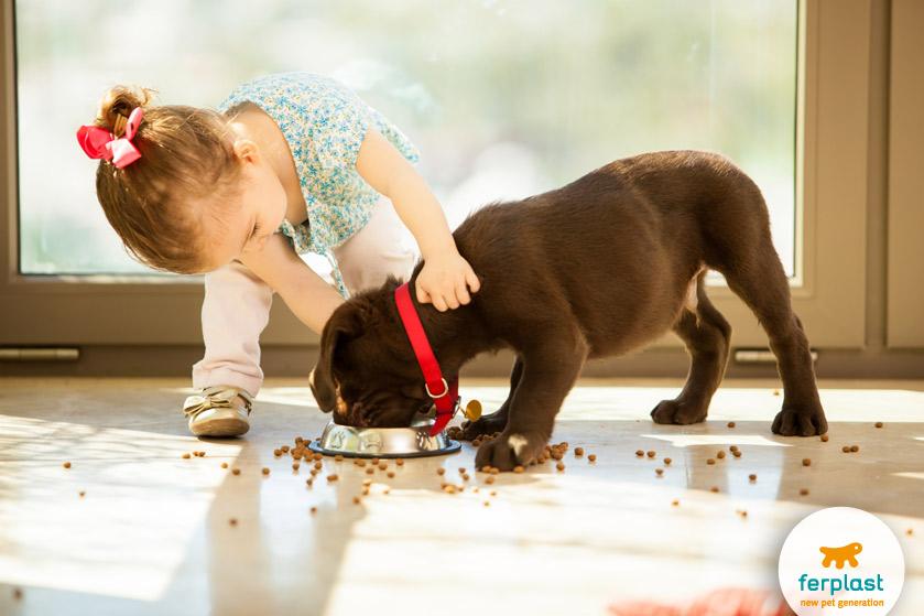 bambini-prendono-cura-cane