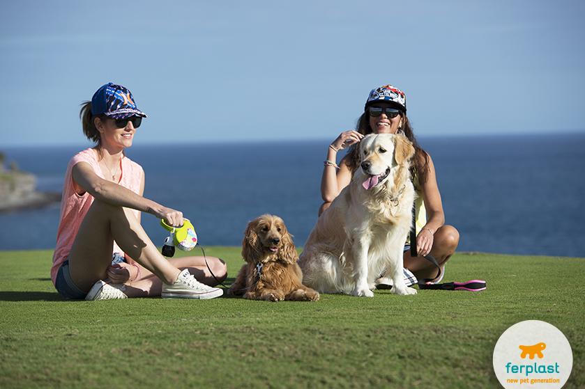 cane_che_gioca_golf