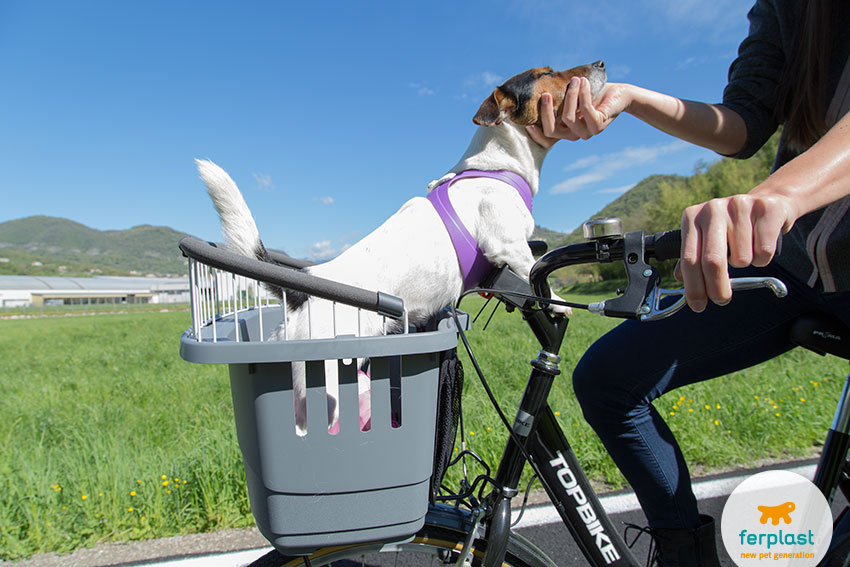 dog bike carrier by ferplast