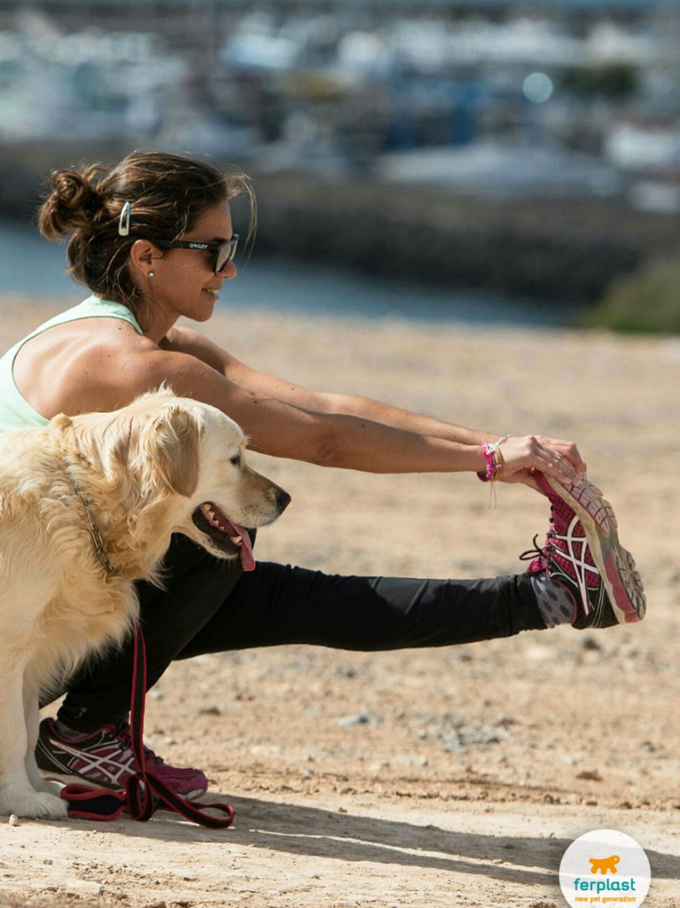 fazer fitness com o seu cão