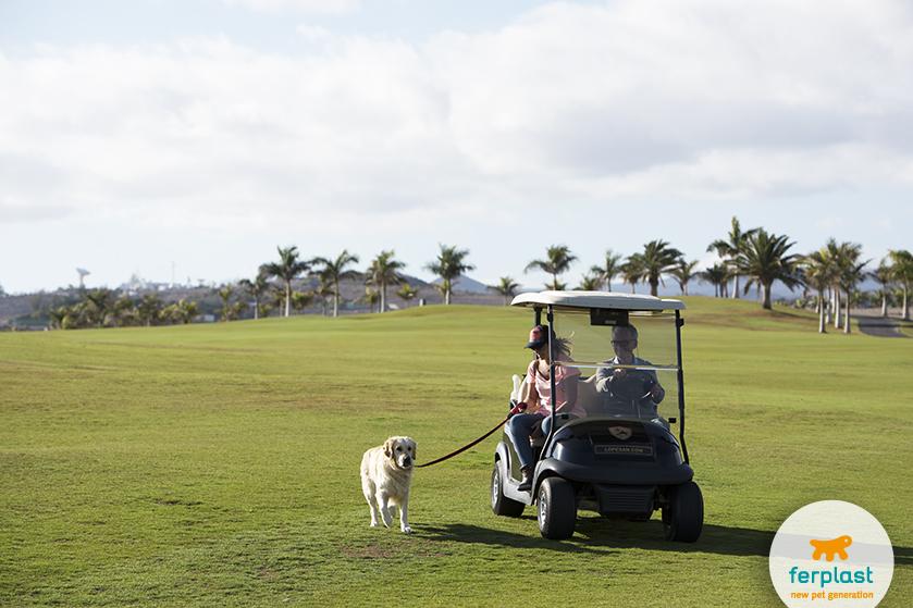 golf_club_udine