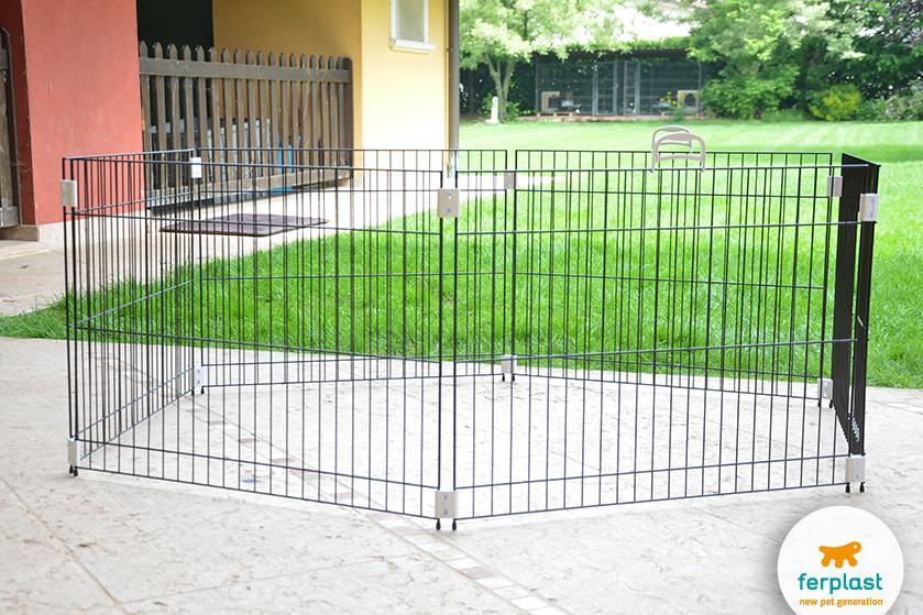 recinto_cuccioli_cane