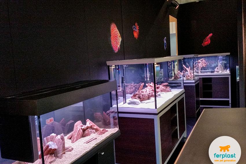 Ferplast's aquarium area at Interzoo 2016 Nuremberg