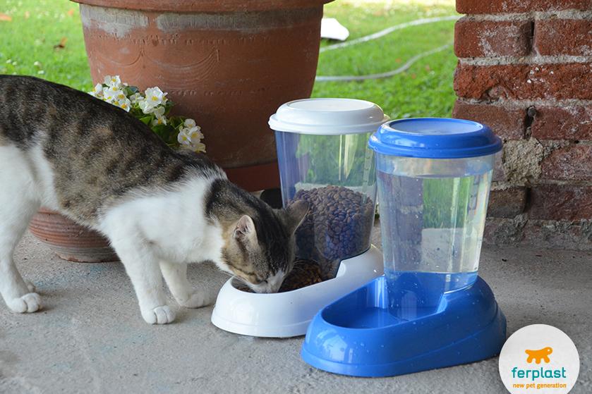 dispenser de comida e agua para gatos da ferplast