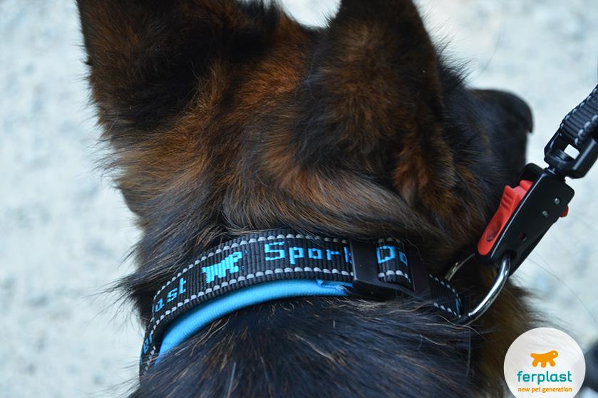 guinzaglio per cani con moschettone automatico e aggancio magnetico