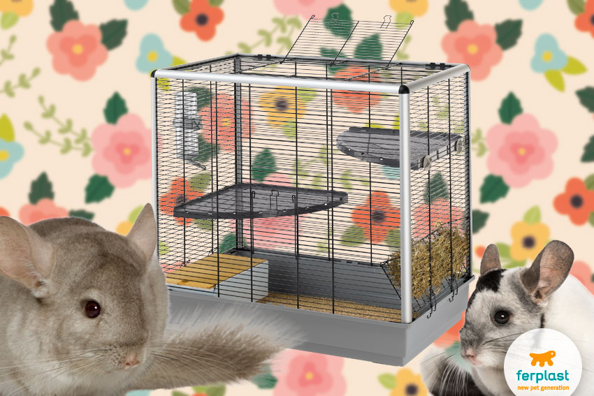 chinchilla cage by ferplast