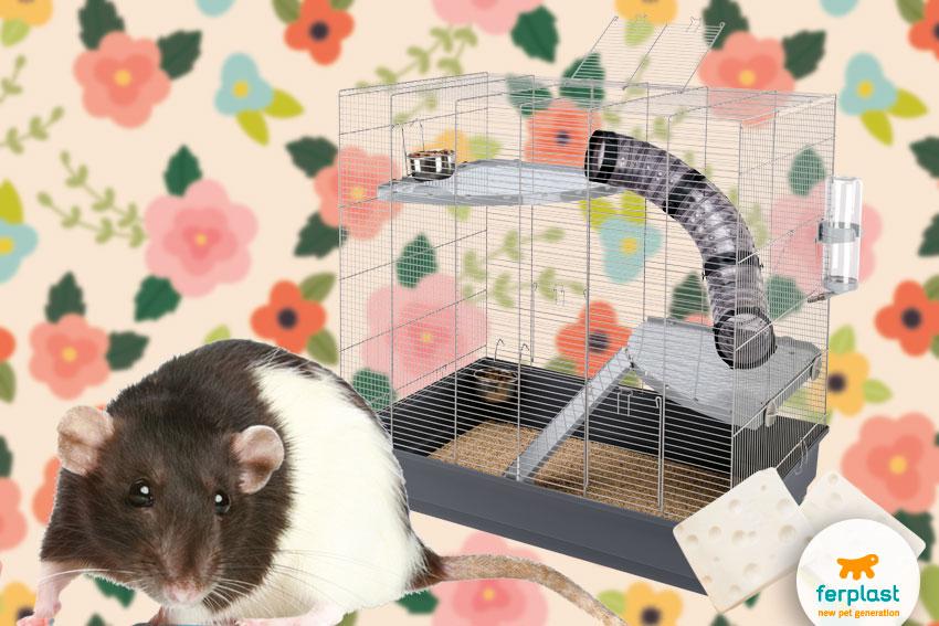 rat cage by ferplast